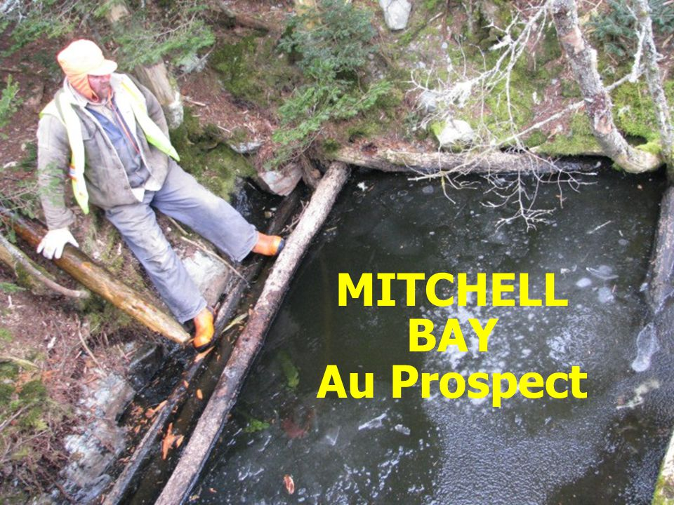 Natural Resources MITCHELL BAY Au Prospect Prospector Perry Bezanson