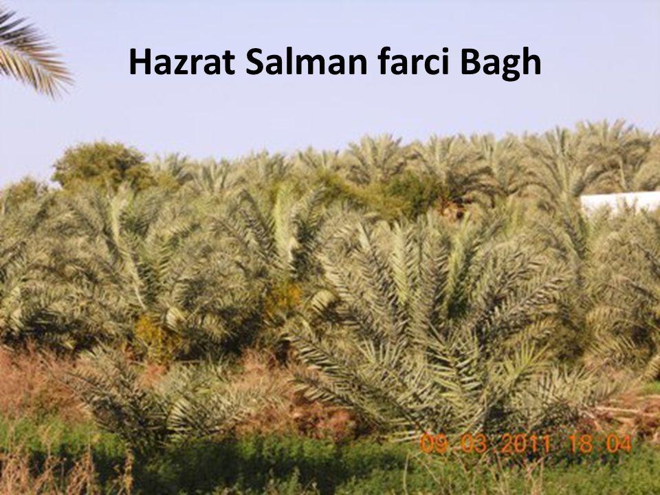 Hazrat Salman farci Bagh