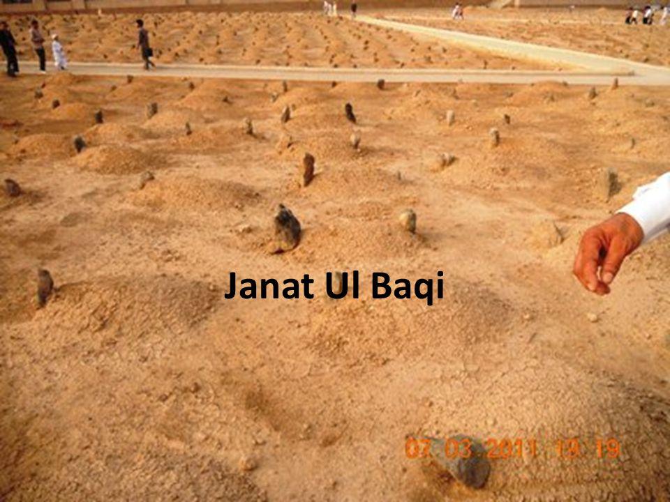 Janat Ul Baqi