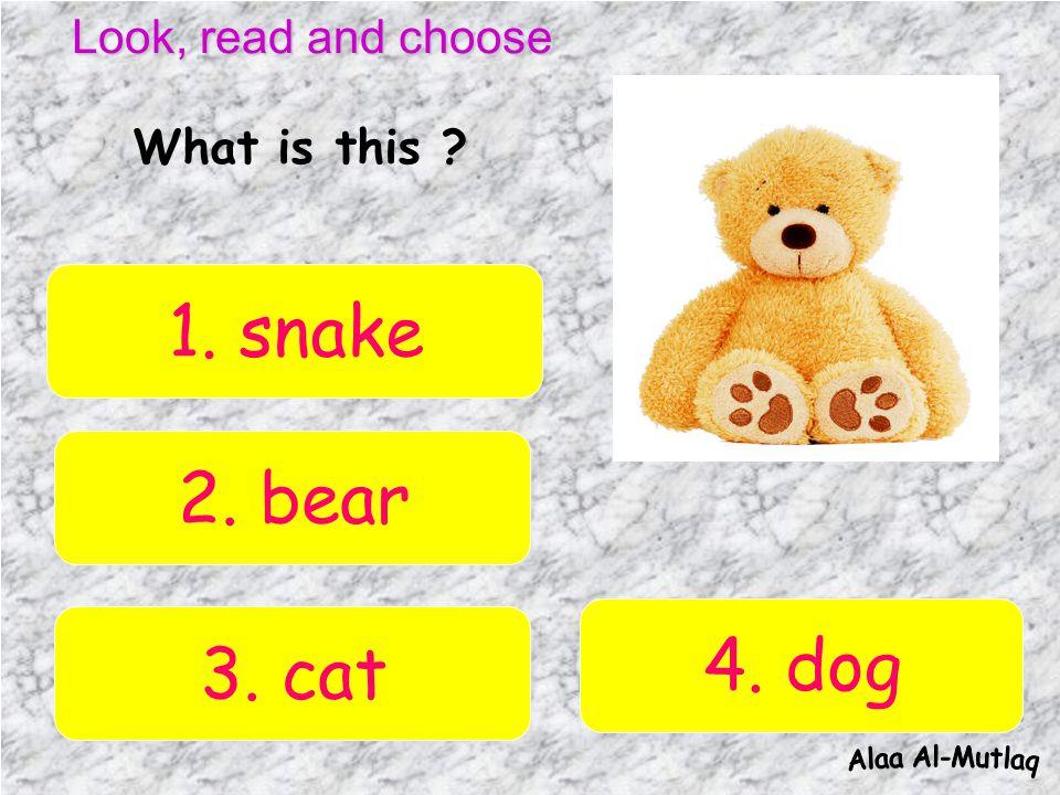 Look, read and choose Q1 Q4 Q7 Q10Q11 Q8 Q5 Q2 Q9 Q6 Q3 Q12 Q13Q15Q14