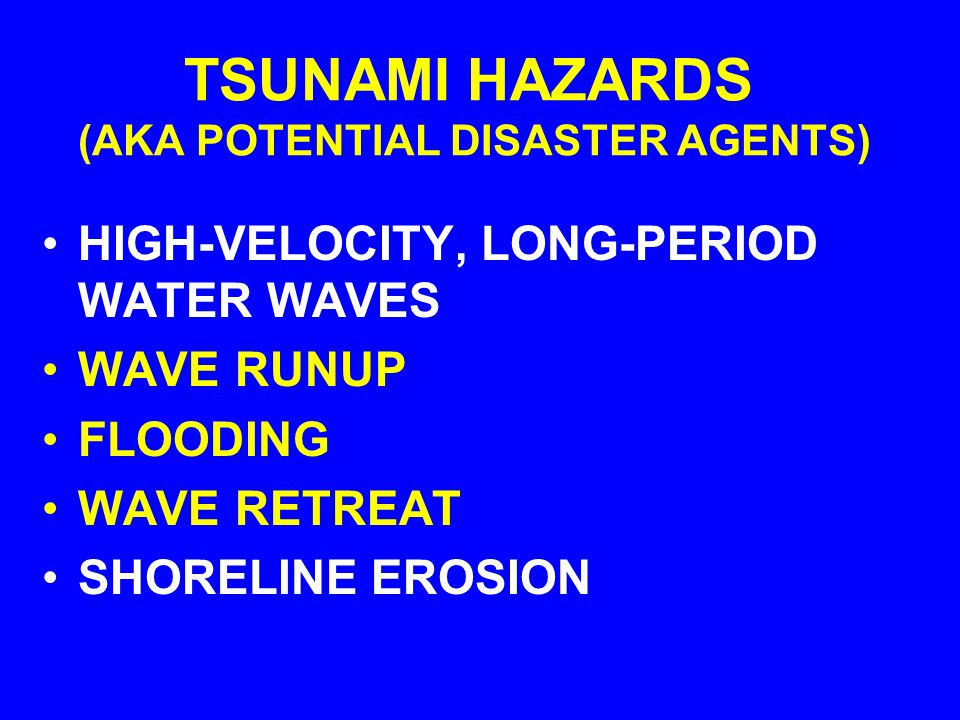THE POTENTIAL DISASTER AGENTS OF AN TSUNAMI