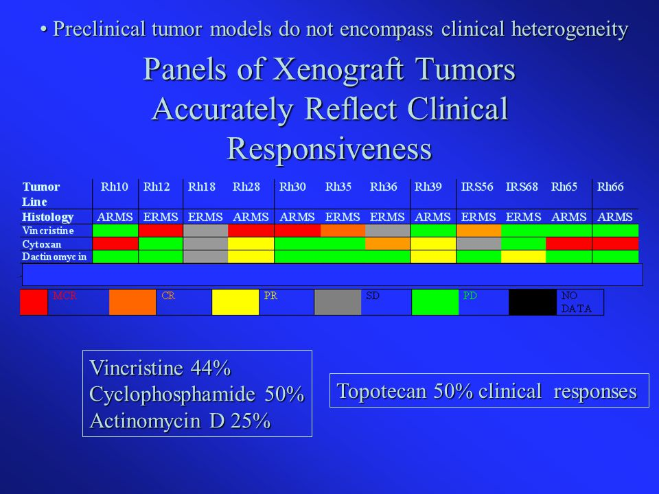 Panels of Xenograft Tumors Accurately Reflect Clinical Responsiveness Vincristine 44% Cyclophosphamide 50% Actinomycin D 25% Topotecan 50% clinical responses Preclinical tumor models do not encompass clinical heterogeneity Preclinical tumor models do not encompass clinical heterogeneity
