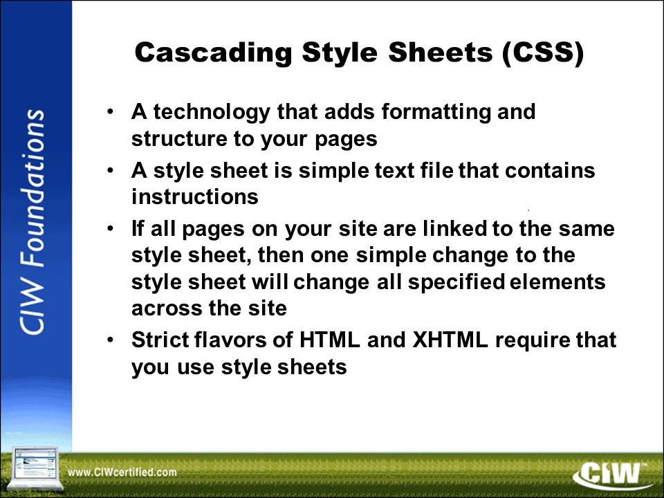Cascading Style Sheets (CSS) A technology that adds formatting and structure to your pages A style sheet is simple text file that contains instructions If all pages on your site are linked to the same style sheet, then one simple change to the style sheet will change all specified elements across the site Strict flavors of HTML and XHTML require that you use style sheets