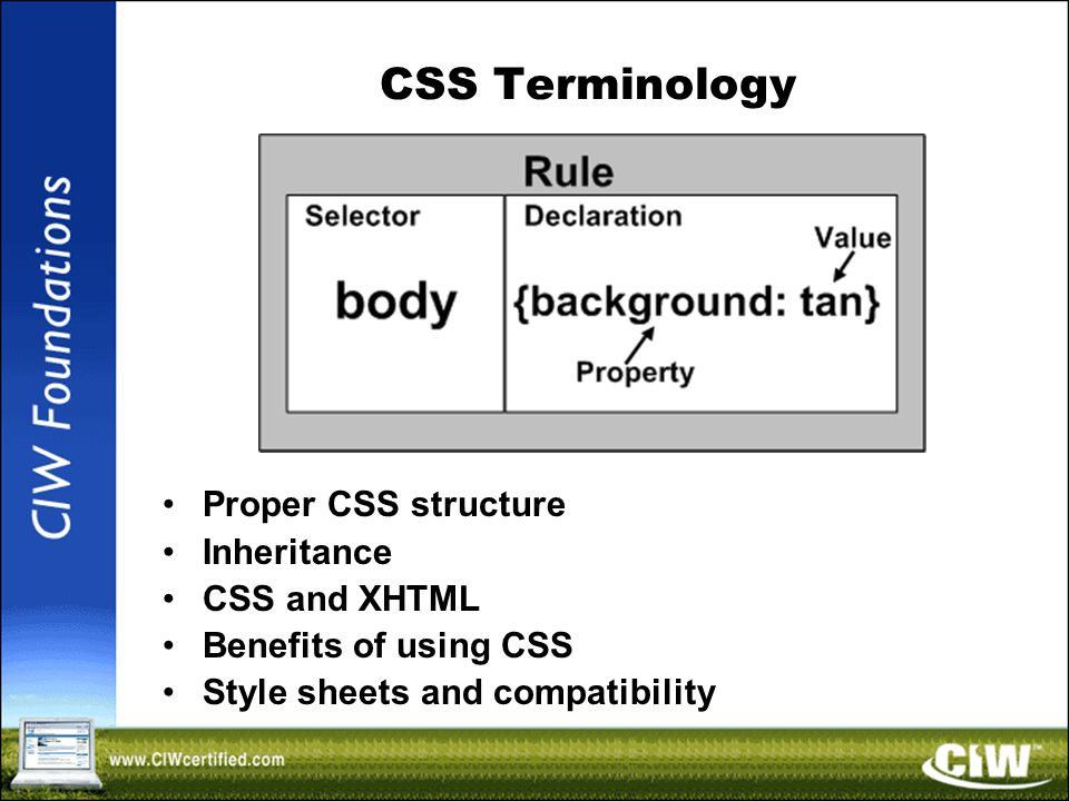 CSS Terminology Proper CSS structure Inheritance CSS and XHTML Benefits of using CSS Style sheets and compatibility