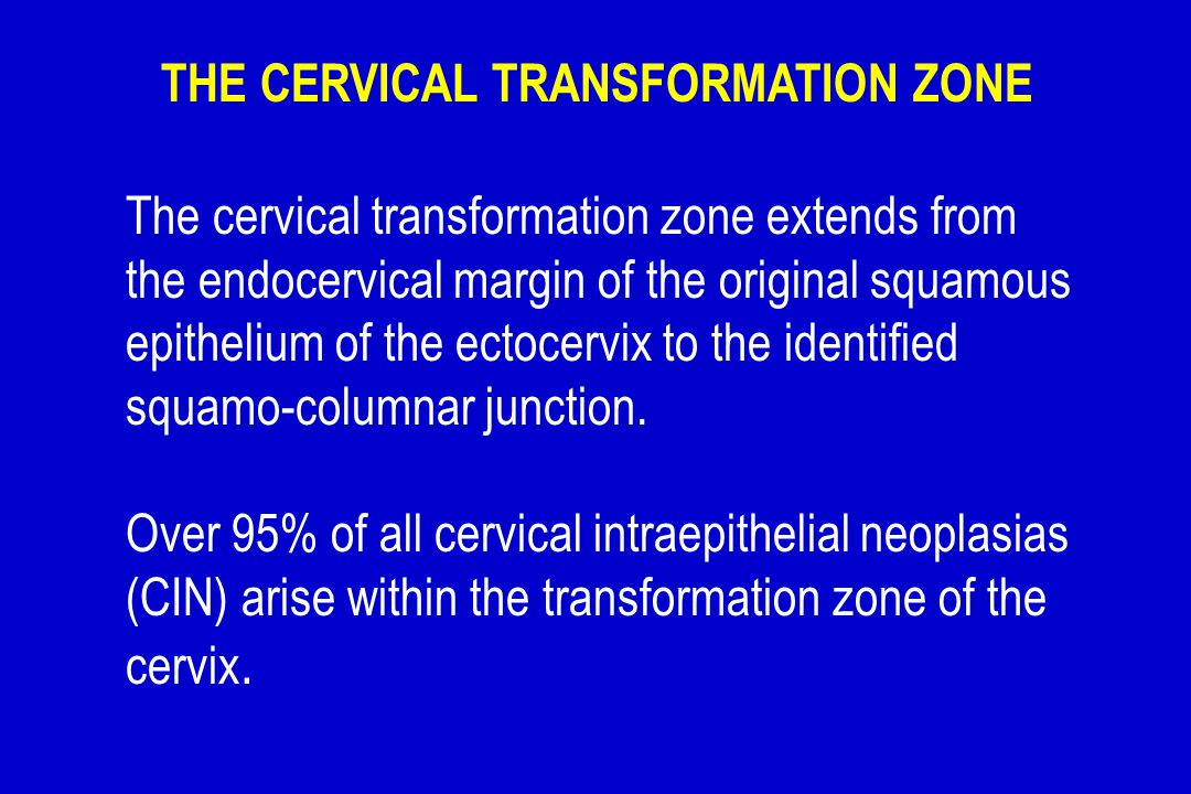 The cervical transformation zone extends from the endocervical margin of the original squamous epithelium of the ectocervix to the identified squamo-c