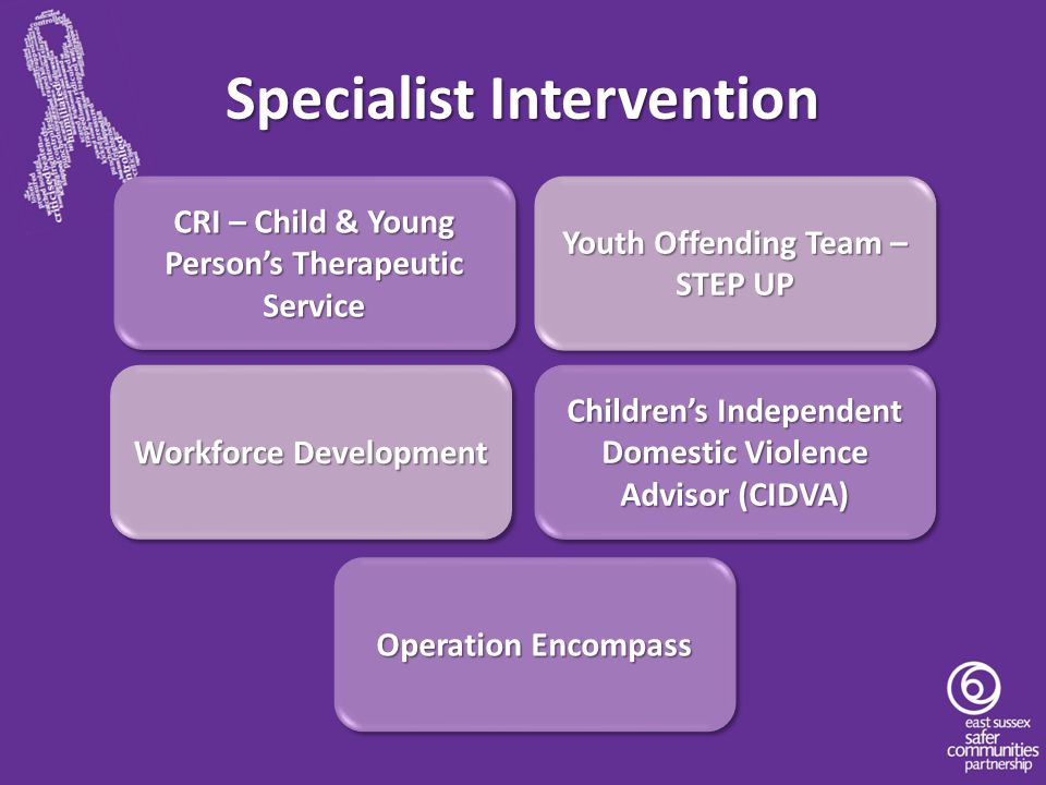 Specialist Intervention CRI – Child & Young Person's Therapeutic Service Youth Offending Team – STEP UP Workforce Development Children's Independent D