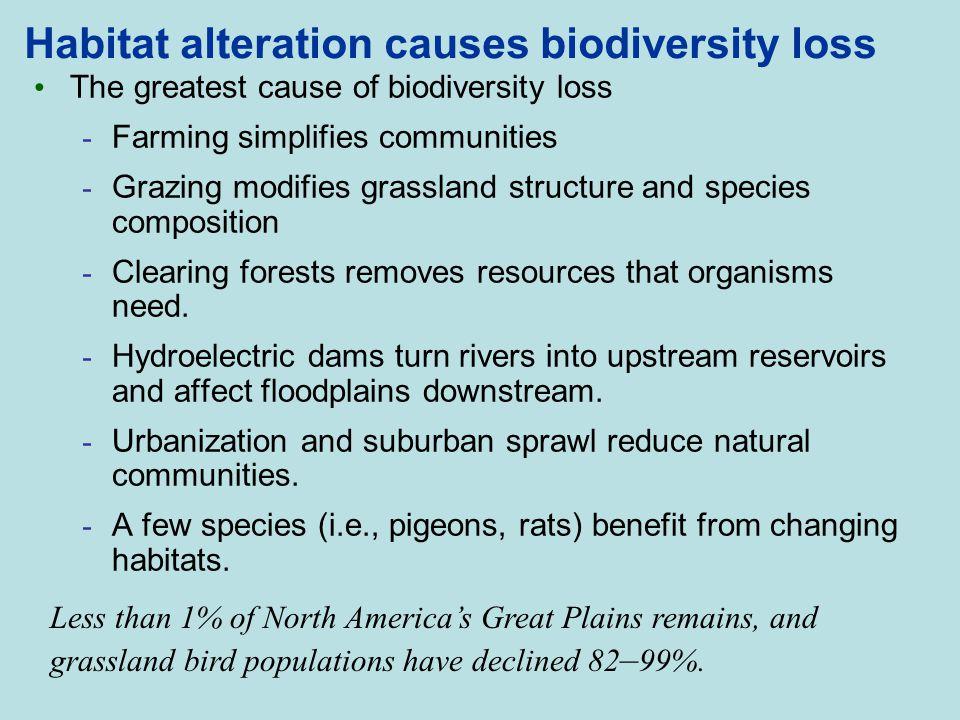 Habitat alteration causes biodiversity loss The greatest cause of biodiversity loss - Farming simplifies communities - Grazing modifies grassland stru