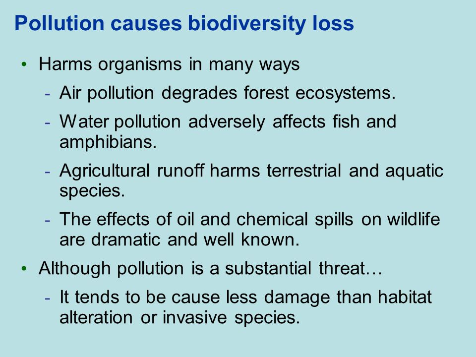 Pollution causes biodiversity loss Harms organisms in many ways - Air pollution degrades forest ecosystems. - Water pollution adversely affects fish a