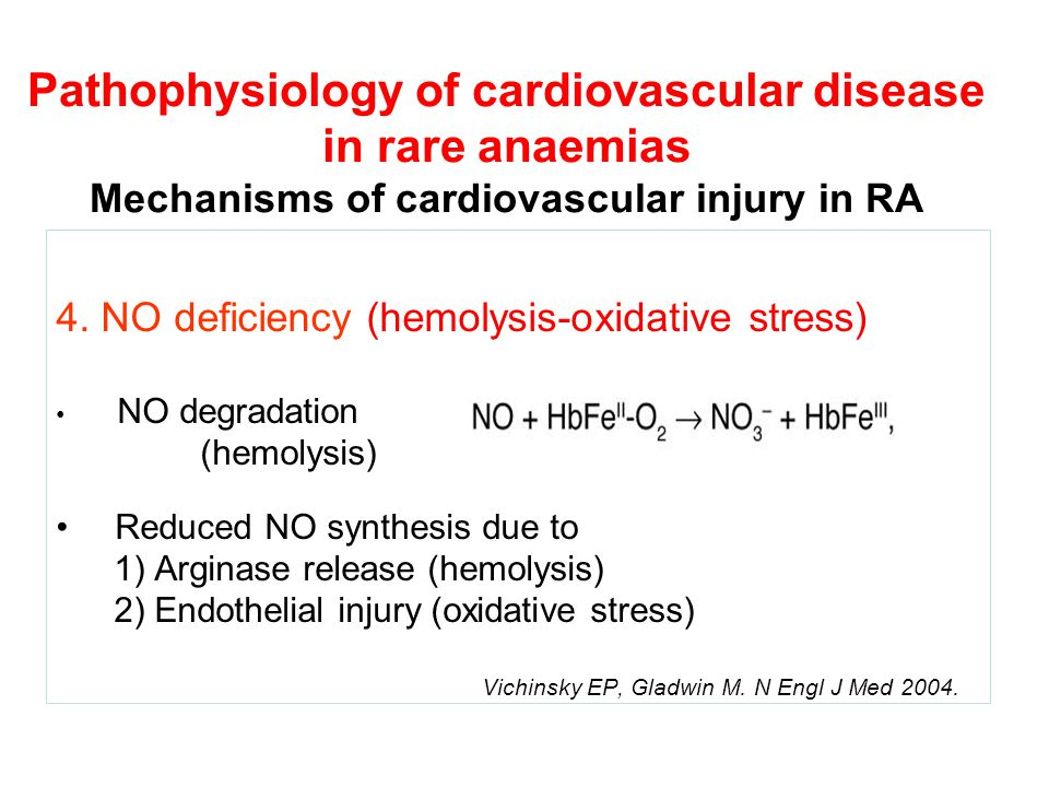Pathophysiology of cardiovascular disease in rare anaemias Mechanisms of cardiovascular injury in RA 4.