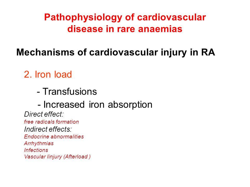 Pathophysiology of cardiovascular disease in rare anaemias 2.