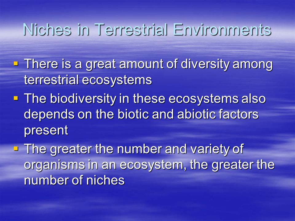Niches in Terrestrial Environments  There is a great amount of diversity among terrestrial ecosystems  The biodiversity in these ecosystems also dep