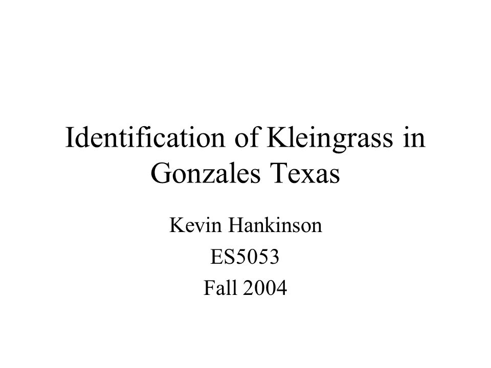 Identification of Kleingrass in Gonzales Texas Kevin Hankinson ES5053 Fall 2004