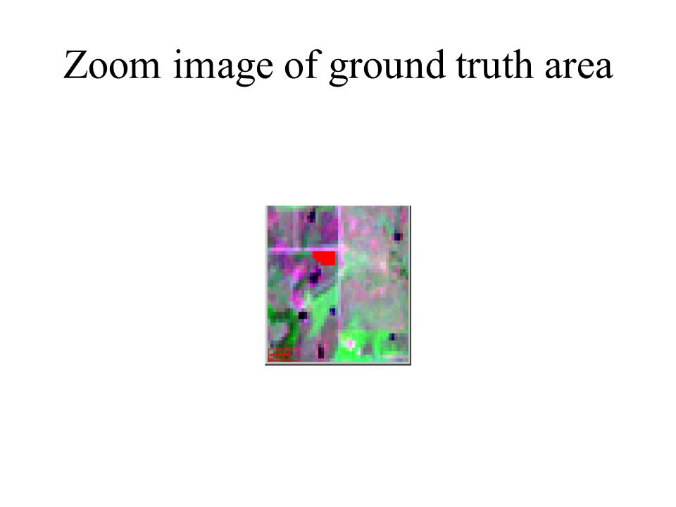 Zoom image of ground truth area