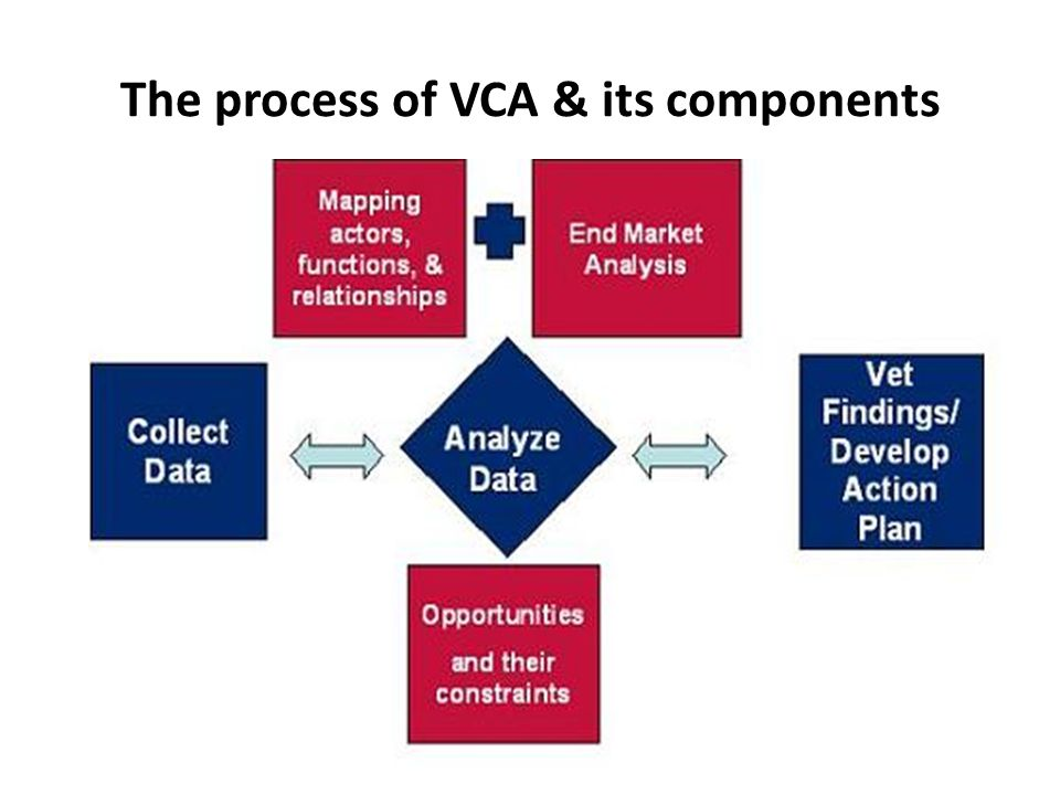 The process of VCA & its components