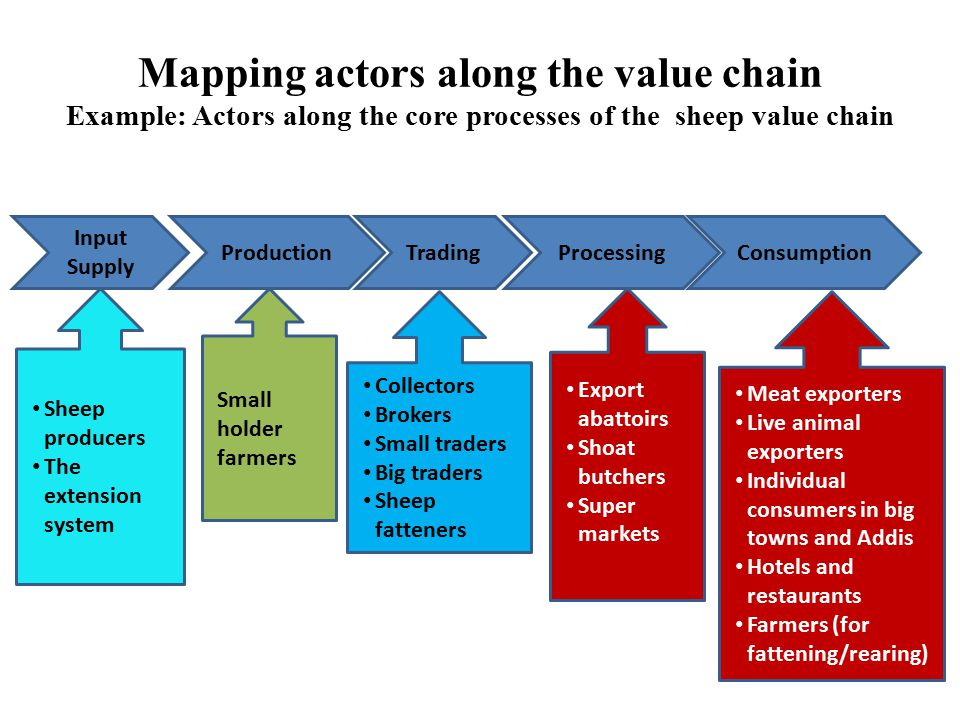 Mapping actors along the value chain Example: Actors along the core processes of the sheep value chain Input Supply ProductionTradingProcessingConsump