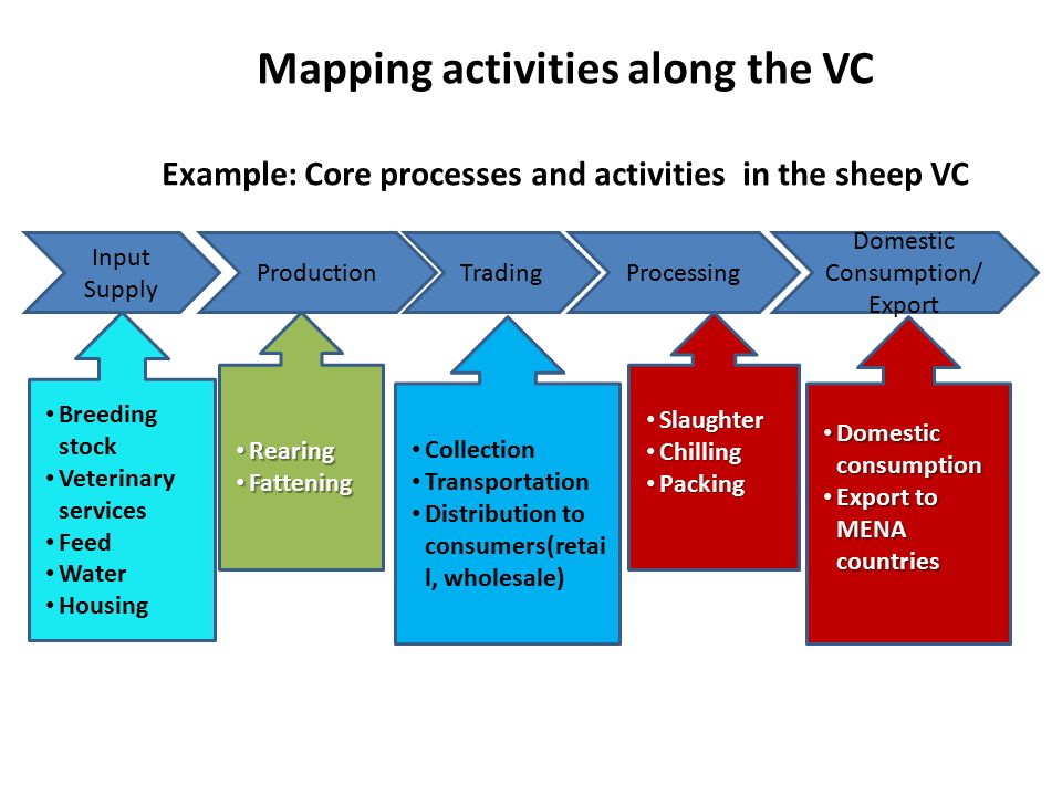 Mapping activities along the VC Example: Core processes and activities in the sheep VC Input Supply ProductionTradingProcessing Domestic Consumption/