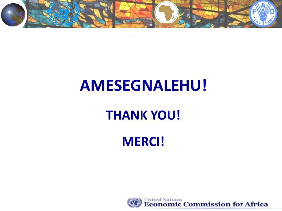AMESEGNALEHU! THANK YOU! MERCI!