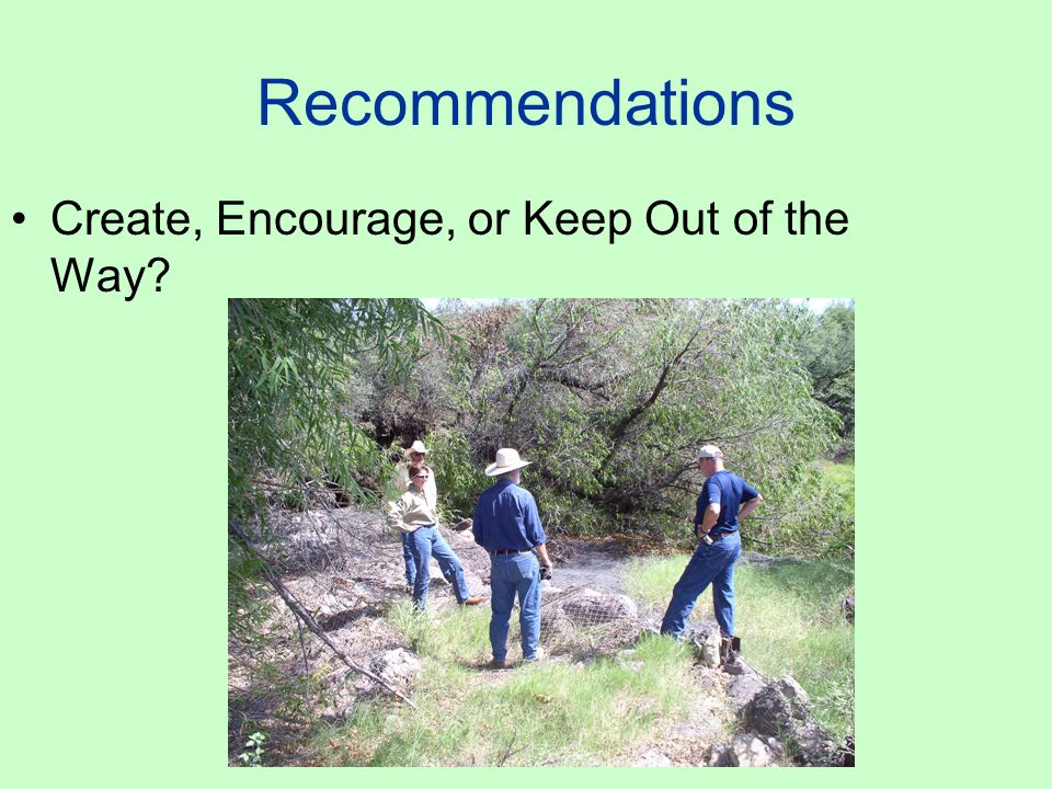 Recommendations Create, Encourage, or Keep Out of the Way?