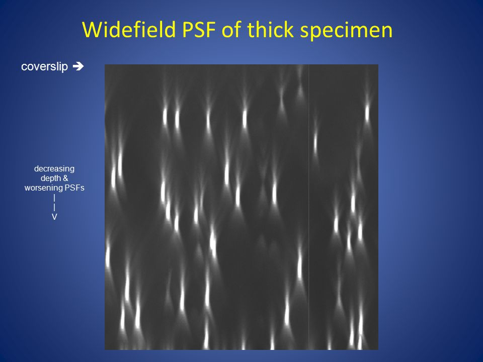 Widefield PSF of thick specimen coverslip  decreasing depth & worsening PSFs | V