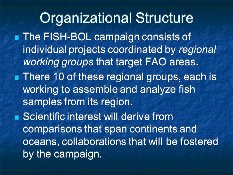 Organizational Structure The FISH-BOL campaign consists of individual projects coordinated by regional working groups that target FAO areas. There 10