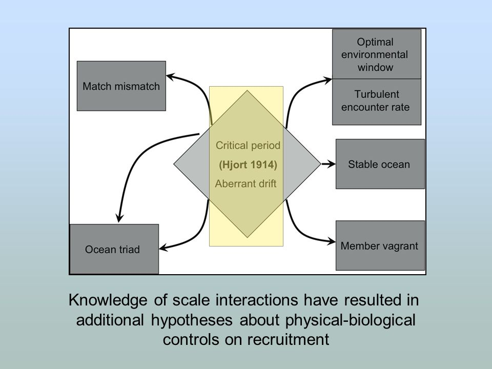 Knowledge of scale interactions have resulted in additional hypotheses about physical-biological controls on recruitment