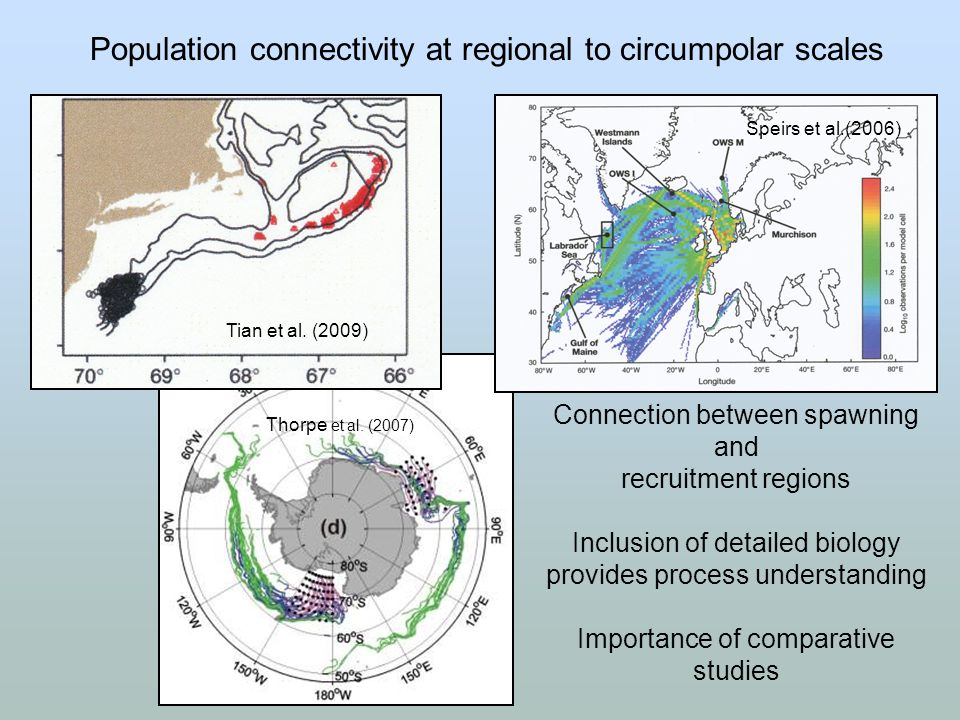 Connection between spawning and recruitment regions Inclusion of detailed biology provides process understanding Importance of comparative studies Pop