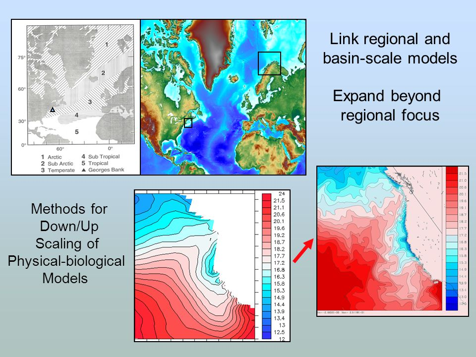 Link regional and basin-scale models Expand beyond regional focus Methods for Down/Up Scaling of Physical-biological Models