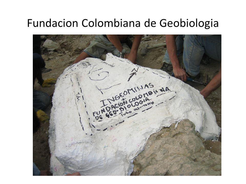 Fundacion Colombiana de Geobiologia