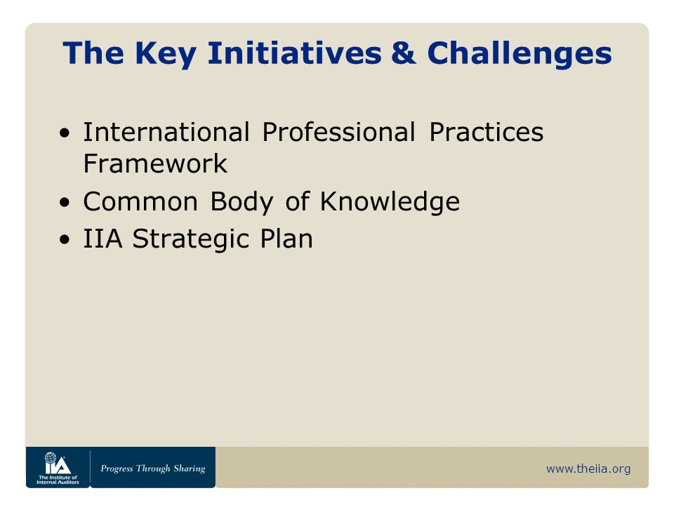 www.theiia.org The Key Initiatives & Challenges International Professional Practices Framework Common Body of Knowledge IIA Strategic Plan