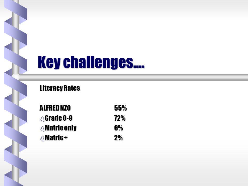 Key challenges….. Unemployment Rates b Umzimvubu86% b Umzimkulu72%