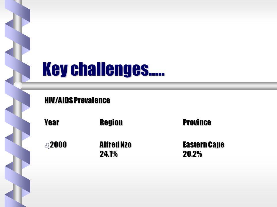 Key challenges.... Literacy Rates ALFRED NZO55% b Grade b Grade 0-972% b Matric b Matric only6% +2%