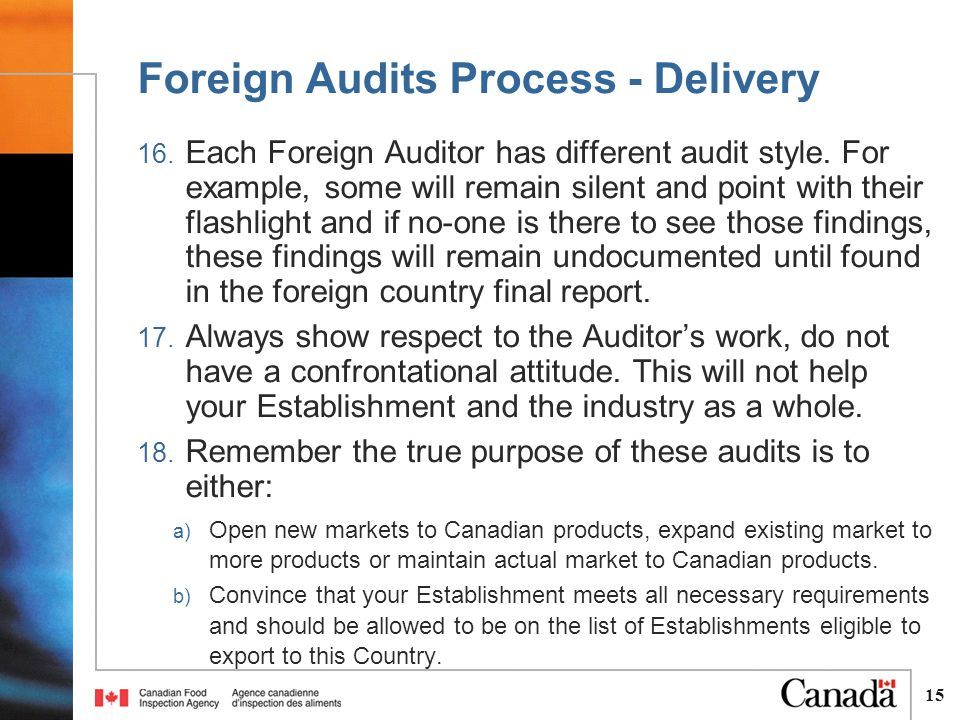 15 16. Each Foreign Auditor has different audit style.