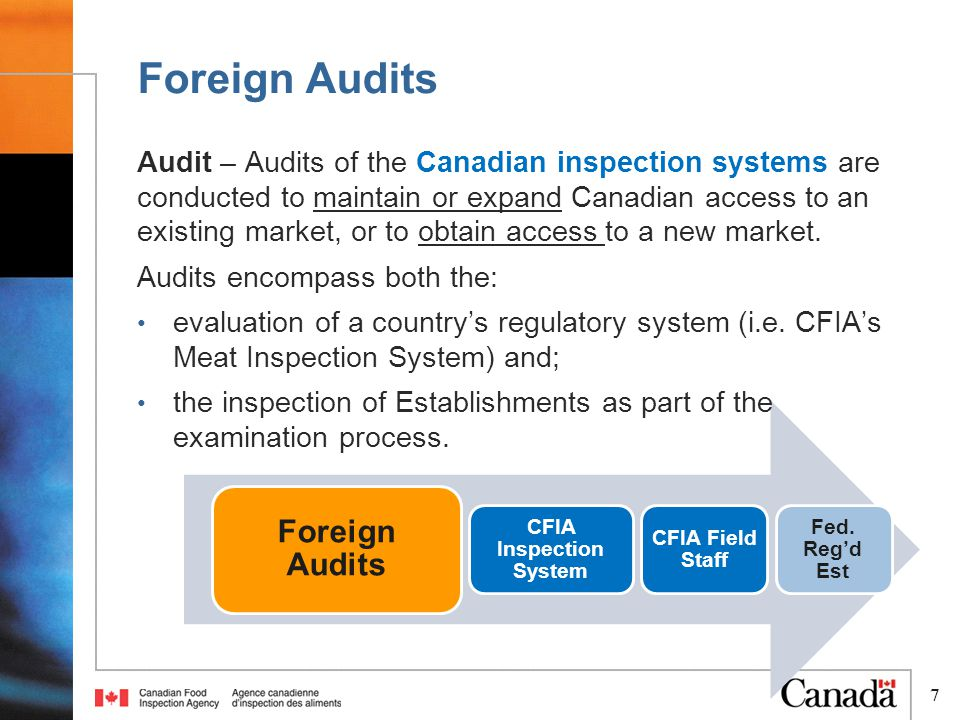 8 Incoming Foreign Audits Process 8