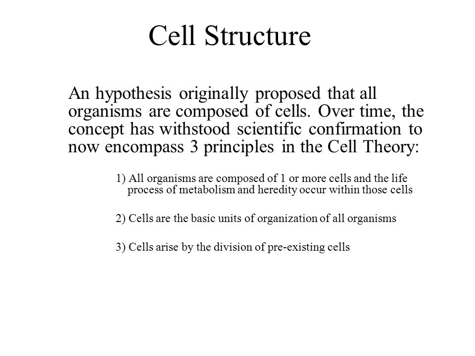 A generalized Eukaryotic cell