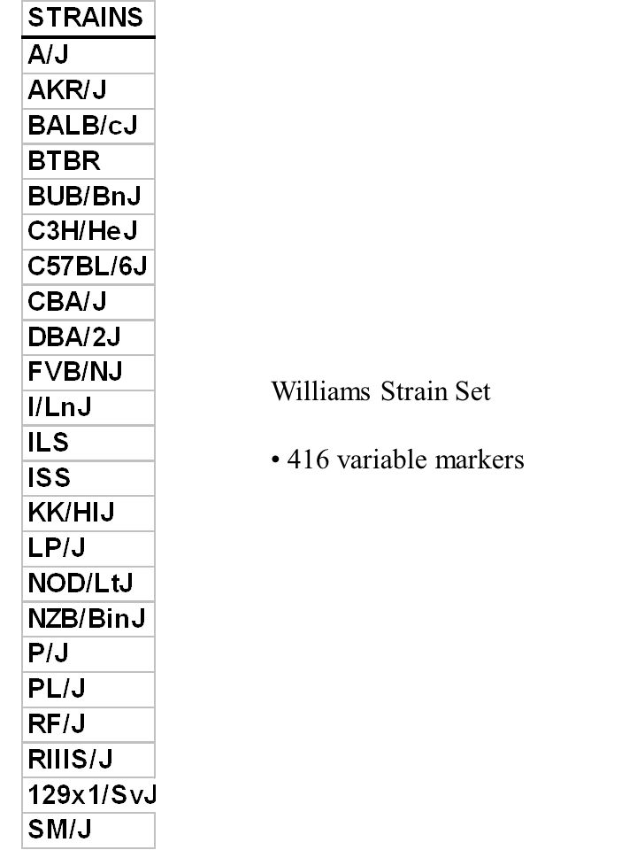 Williams Strain Set 416 variable markers