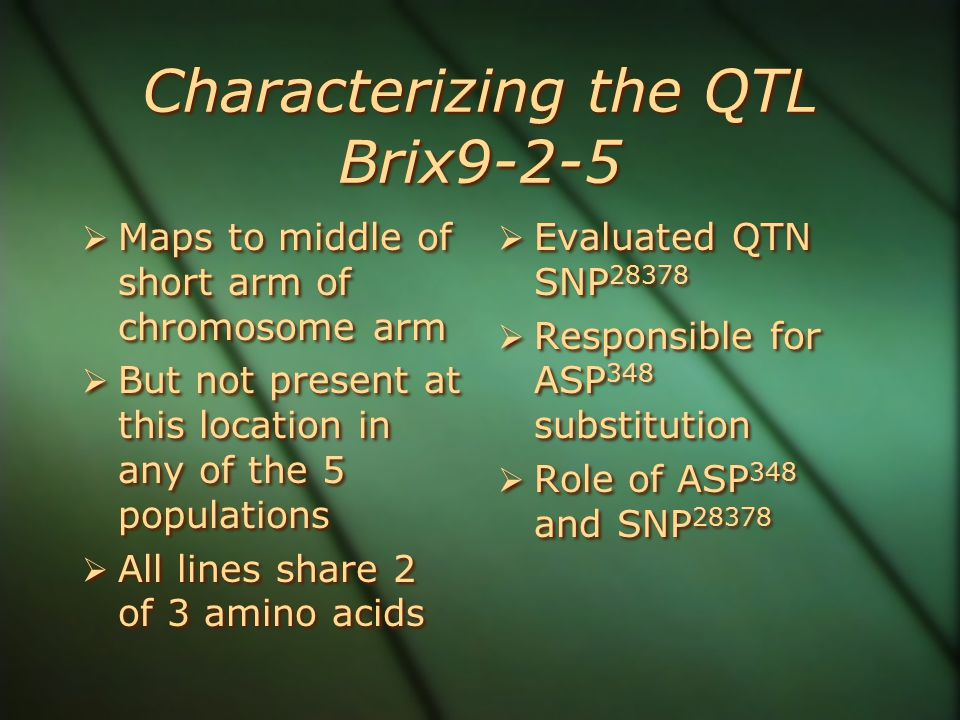 Characterizing the QTL Brix9-2-5  Maps to middle of short arm of chromosome arm  But not present at this location in any of the 5 populations  All lines share 2 of 3 amino acids  Maps to middle of short arm of chromosome arm  But not present at this location in any of the 5 populations  All lines share 2 of 3 amino acids  Evaluated QTN SNP 28378  Responsible for ASP 348 substitution  Role of ASP 348 and SNP 28378  Evaluated QTN SNP 28378  Responsible for ASP 348 substitution  Role of ASP 348 and SNP 28378