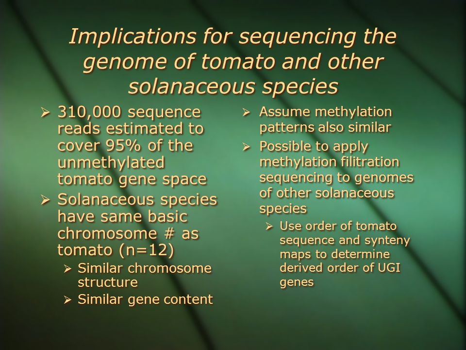 Implications for sequencing the genome of tomato and other solanaceous species  310,000 sequence reads estimated to cover 95% of the unmethylated tomato gene space  Solanaceous species have same basic chromosome # as tomato (n=12)  Similar chromosome structure  Similar gene content  310,000 sequence reads estimated to cover 95% of the unmethylated tomato gene space  Solanaceous species have same basic chromosome # as tomato (n=12)  Similar chromosome structure  Similar gene content  Assume methylation patterns also similar  Possible to apply methylation filitration sequencing to genomes of other solanaceous species  Use order of tomato sequence and synteny maps to determine derived order of UGI genes  Assume methylation patterns also similar  Possible to apply methylation filitration sequencing to genomes of other solanaceous species  Use order of tomato sequence and synteny maps to determine derived order of UGI genes