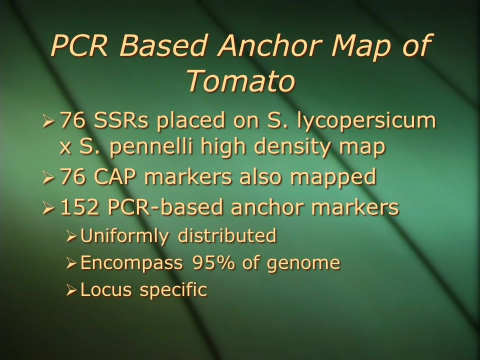 PCR Based Anchor Map of Tomato  76 SSRs placed on S.