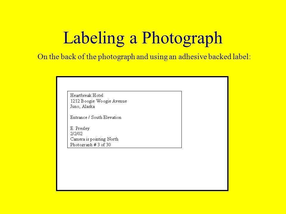 Labeling a Photograph On the back of the photograph and using an adhesive backed label: