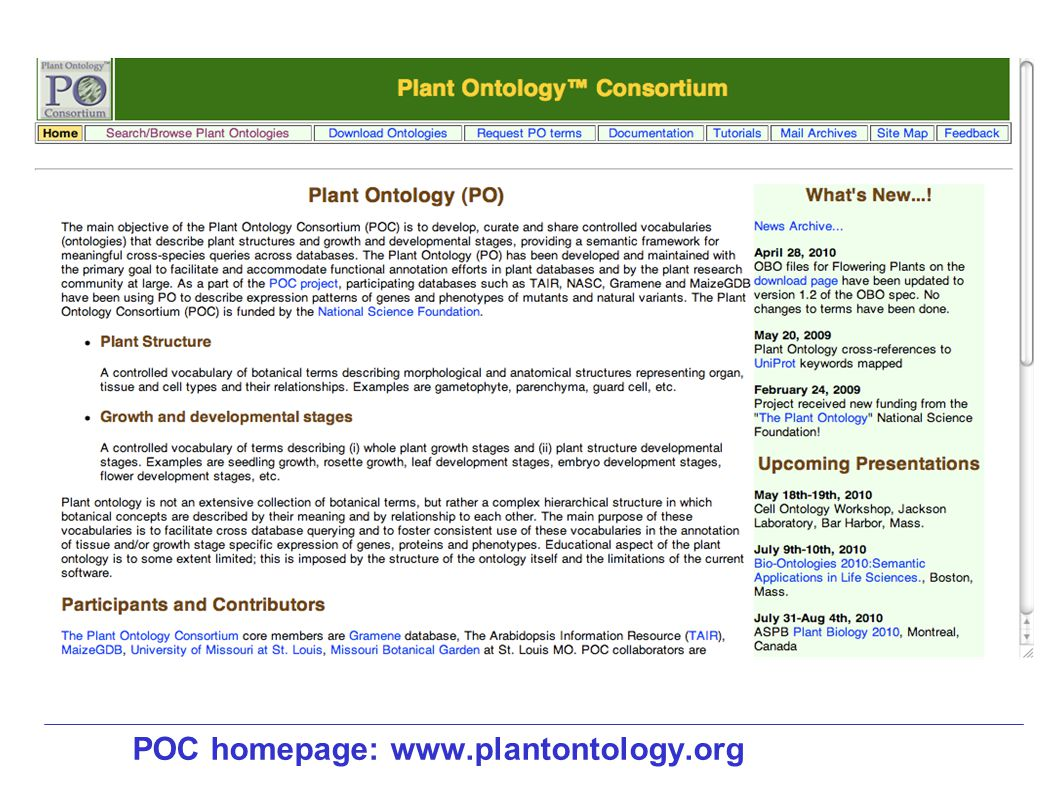 POC homepage: www.plantontology.org