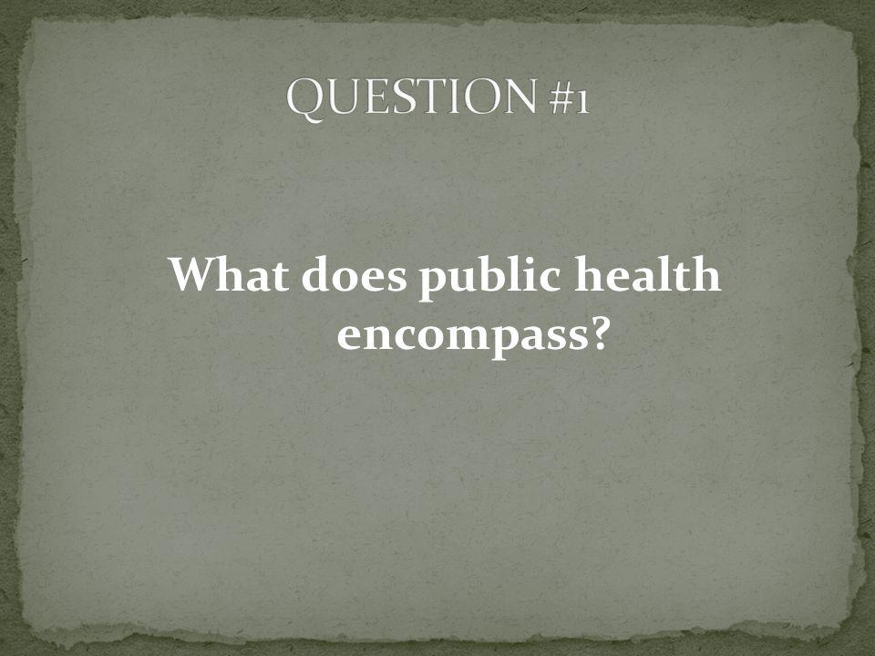 What does public health encompass