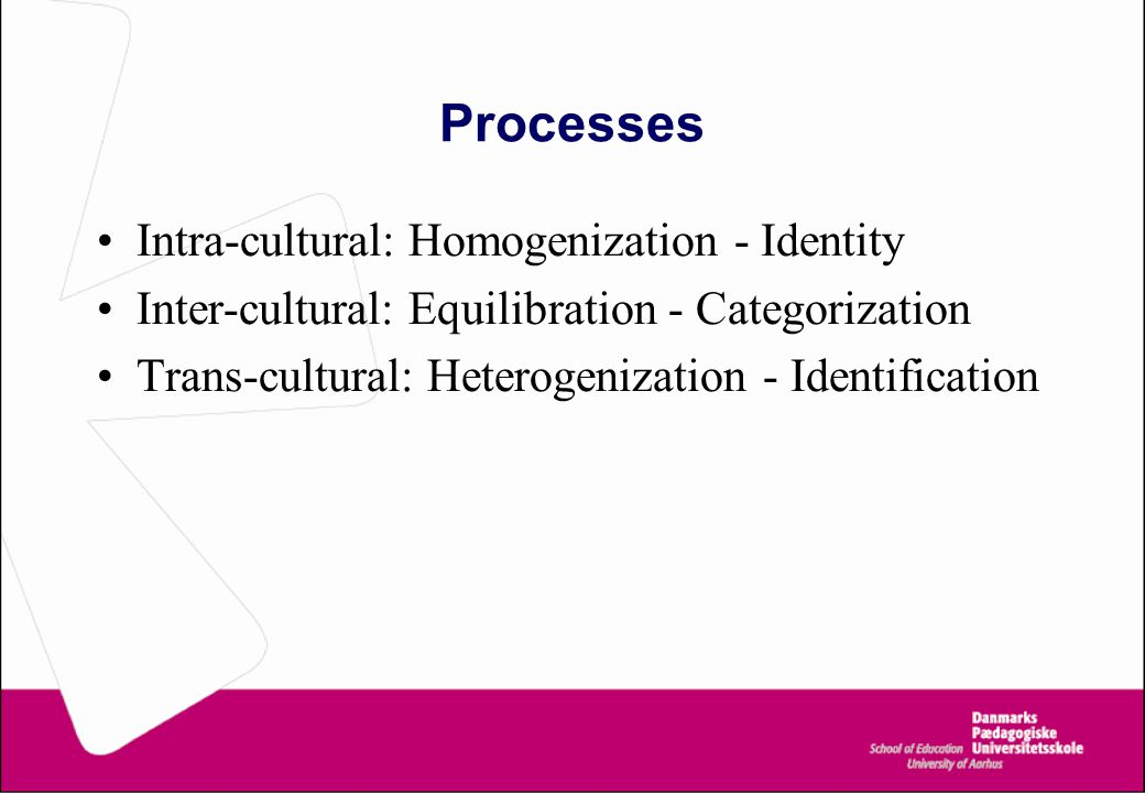 Processes Intra-cultural: Homogenization - Identity Inter-cultural: Equilibration - Categorization Trans-cultural: Heterogenization - Identification