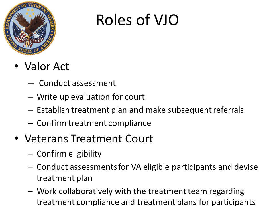 Roles of VJO Valor Act – Conduct assessment – Write up evaluation for court – Establish treatment plan and make subsequent referrals – Confirm treatment compliance Veterans Treatment Court –Confirm eligibility –Conduct assessments for VA eligible participants and devise treatment plan –Work collaboratively with the treatment team regarding treatment compliance and treatment plans for participants