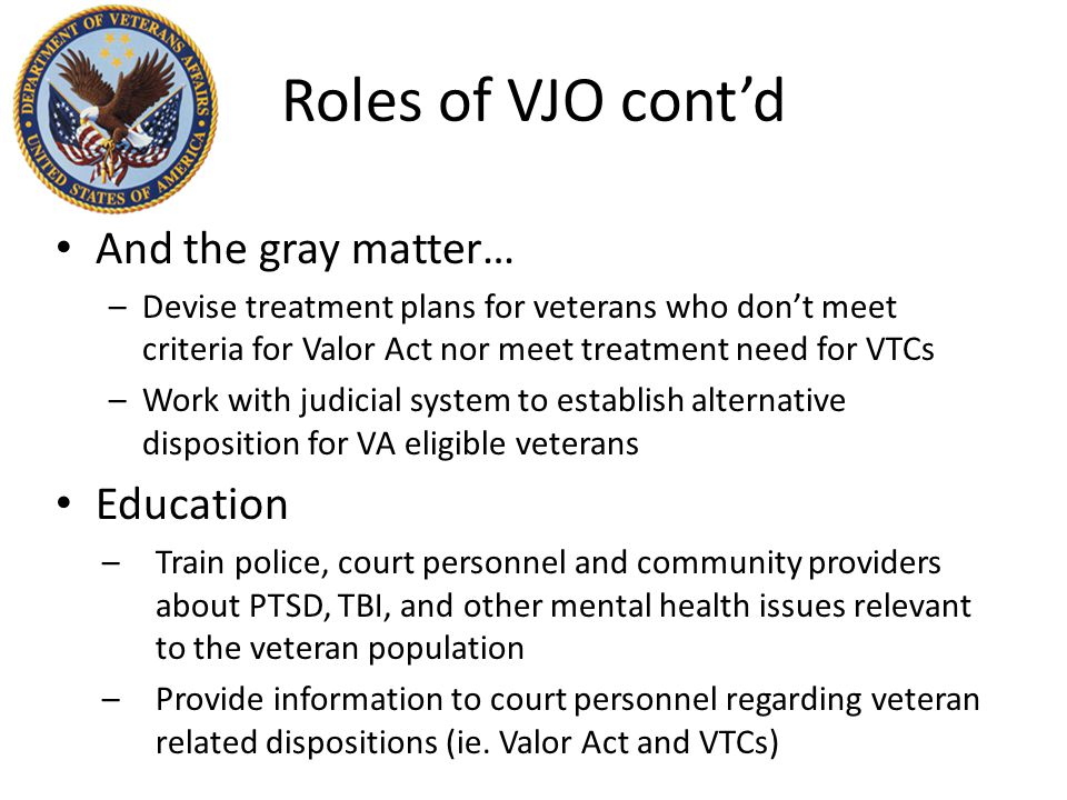 Roles of VJO cont'd And the gray matter… –Devise treatment plans for veterans who don't meet criteria for Valor Act nor meet treatment need for VTCs –Work with judicial system to establish alternative disposition for VA eligible veterans Education –Train police, court personnel and community providers about PTSD, TBI, and other mental health issues relevant to the veteran population –Provide information to court personnel regarding veteran related dispositions (ie.