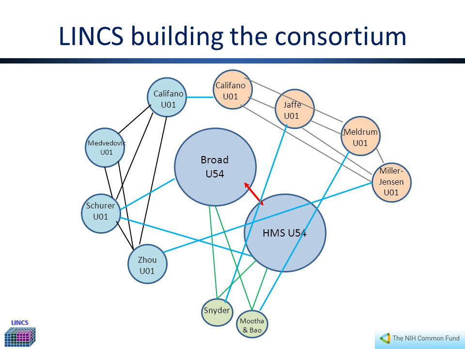 LINCS LINCS building the consortium Broad U54 HMS U54 Miller- Jensen U01 Califano U01 Jaffe U01 Meldrum U01 Mootha & Bao Medvedovic U01 Schurer U01 Zhou U01 Snyder