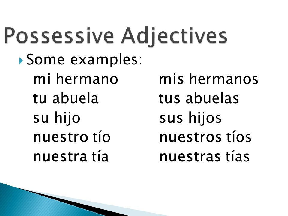  In Spanish, the possessive adjective su has many possible meanings (his, her, its, your, their).