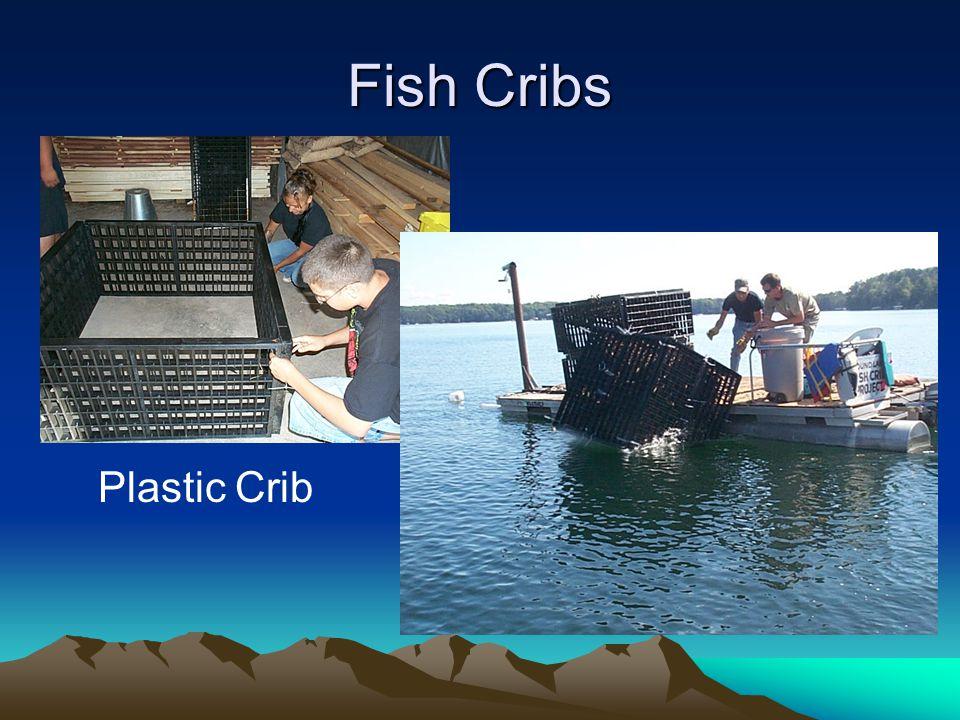 Fish Cribs Plastic Crib
