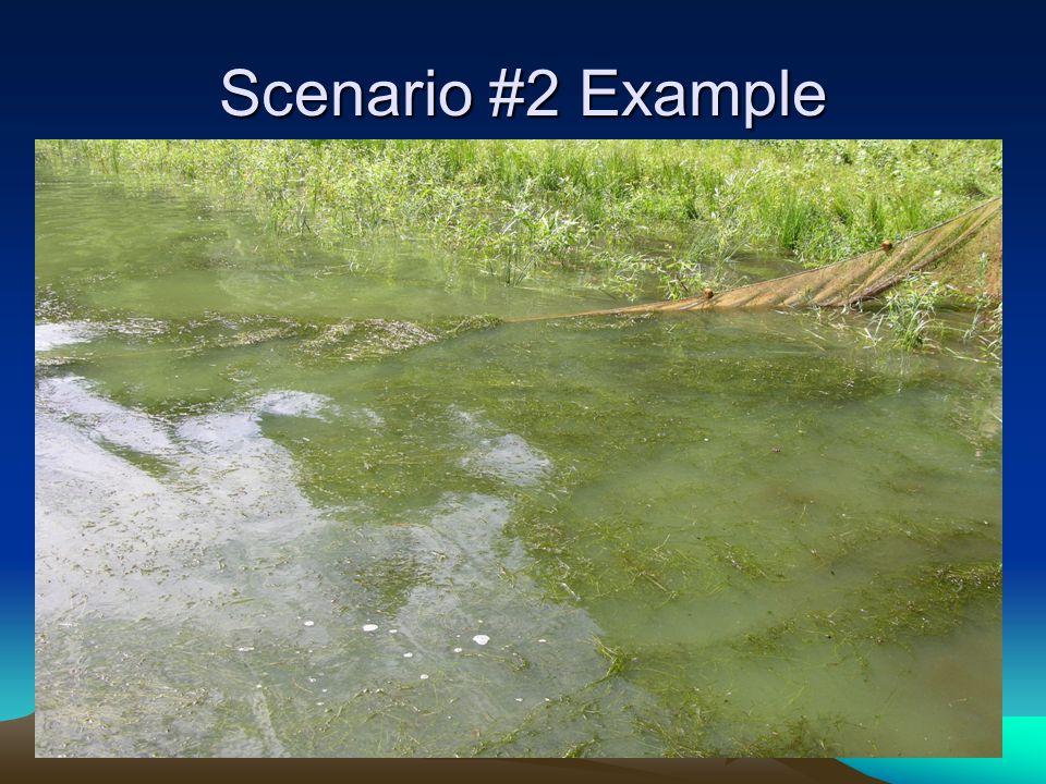 Scenario #2 Example