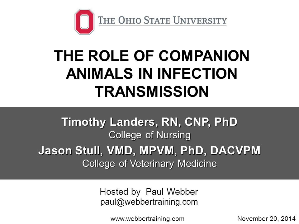 THE ROLE OF COMPANION ANIMALS IN INFECTION TRANSMISSION Timothy Landers, RN, CNP, PhD College of Nursing Jason Stull, VMD, MPVM, PhD, DACVPM College of Veterinary Medicine www.webbertraining.comNovember 20, 2014 Hosted by Paul Webber paul@webbertraining.com