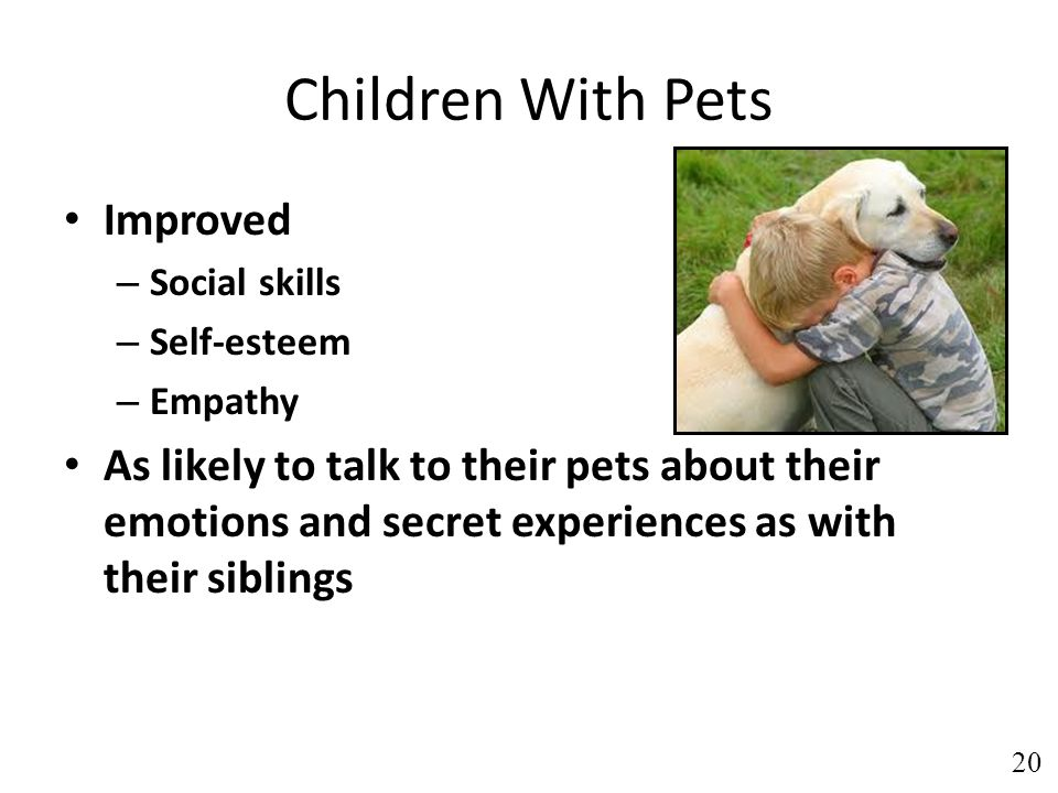 Children With Pets Improved – Social skills – Self-esteem – Empathy As likely to talk to their pets about their emotions and secret experiences as with their siblings 20